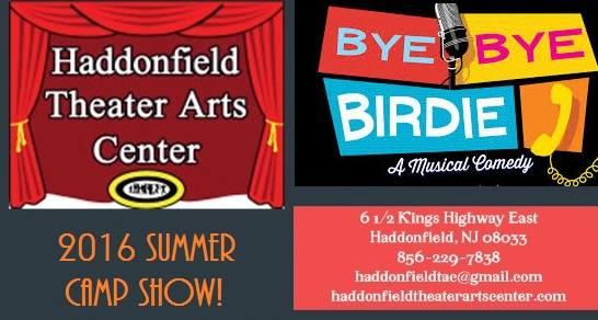 Bye Bye Birdie - Summer Camp Logo